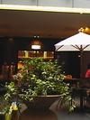cafe_deux_mago_2